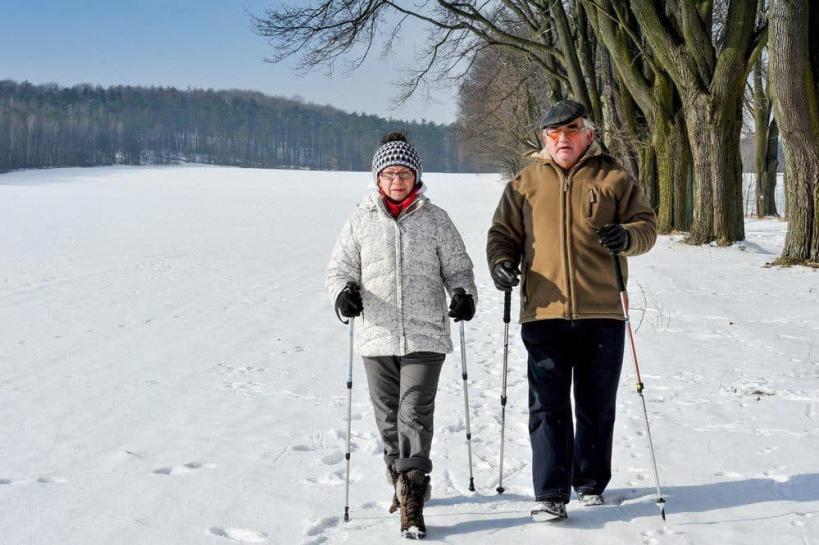 """Как реализуется проект """"Активное долголетие"""" в Коломне"""